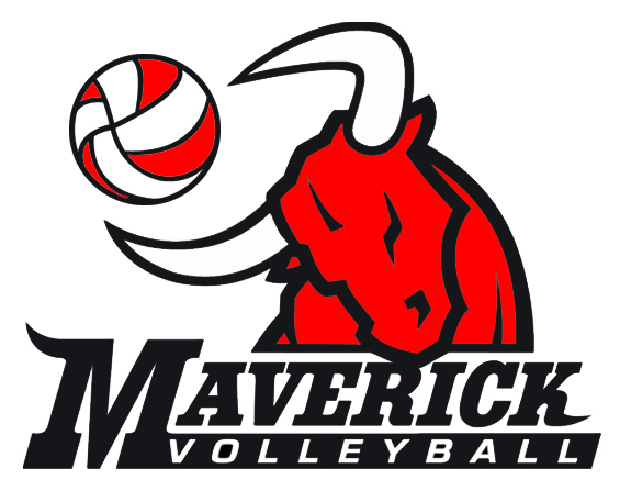 MavVolleyballBull